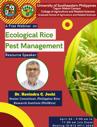 GS CARS organizes a webinar on ecological rice pest management